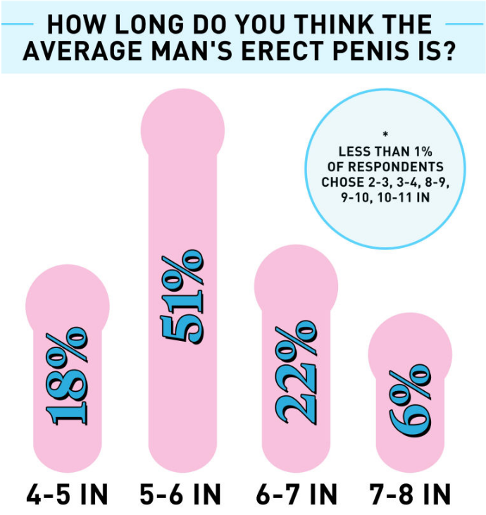results on what women think the average erect penis size is.