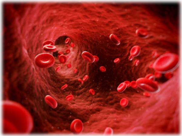 diagram of red blood cells flowing in a artery